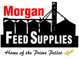 Morgan Feed Supplies
